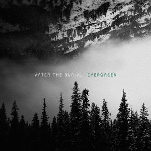 After The Burial - Evergreen lyrics