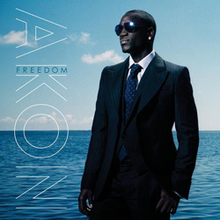 Akon - We dont care lyrics