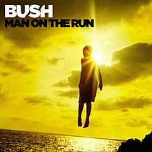Bush lyrics