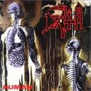 Death - Human lyrics