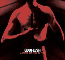 Godflesh - A world lit only by fire lyrics