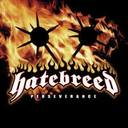 Hatebreed - Perseverance lyrics