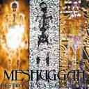 Meshuggah - Destroy Erase Improve lyrics