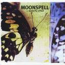 Moonspell - The Butterfly Fx lyrics
