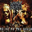 Napalm Death - Order Of The Leech lyrics