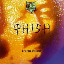 Phish - A Picture Of Nectar lyrics