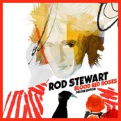 Rod Stewart Look in her eyes lyrics