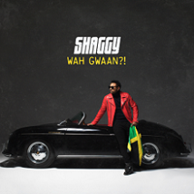 Shaggy - Wah gwaan?! lyrics