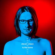 Steven Wilson - To the bone lyrics