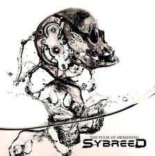 Sybreed - The Pulse Of Awakening lyrics