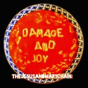 The Jesus And Mary Chain - Damage and joy lyrics