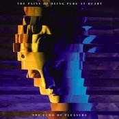 The Pains Of Being Pure At Heart - The echo of pleasure lyrics