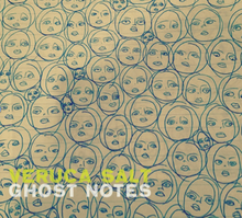 Veruca Salt - Ghost notes lyrics