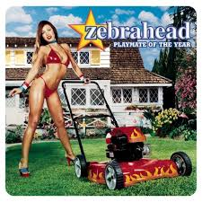 Zebrahead - playmate of the year lyrics